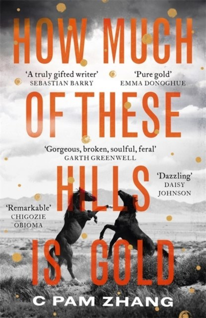 How Much of These Hills is Gold by C Pam Zhang (