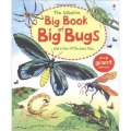 Big Book of Big Bugs by Emily Bone