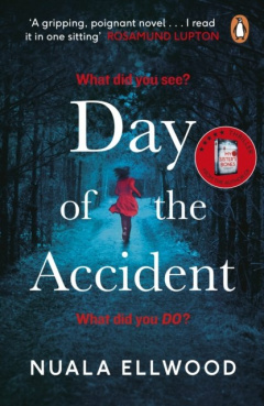 The Day of the Accident by Nuala Ellwood