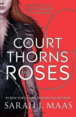 A Court of Thorns and Roses by Sarah J.Maas