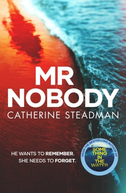 Mr Nobody by Catherine Steadman